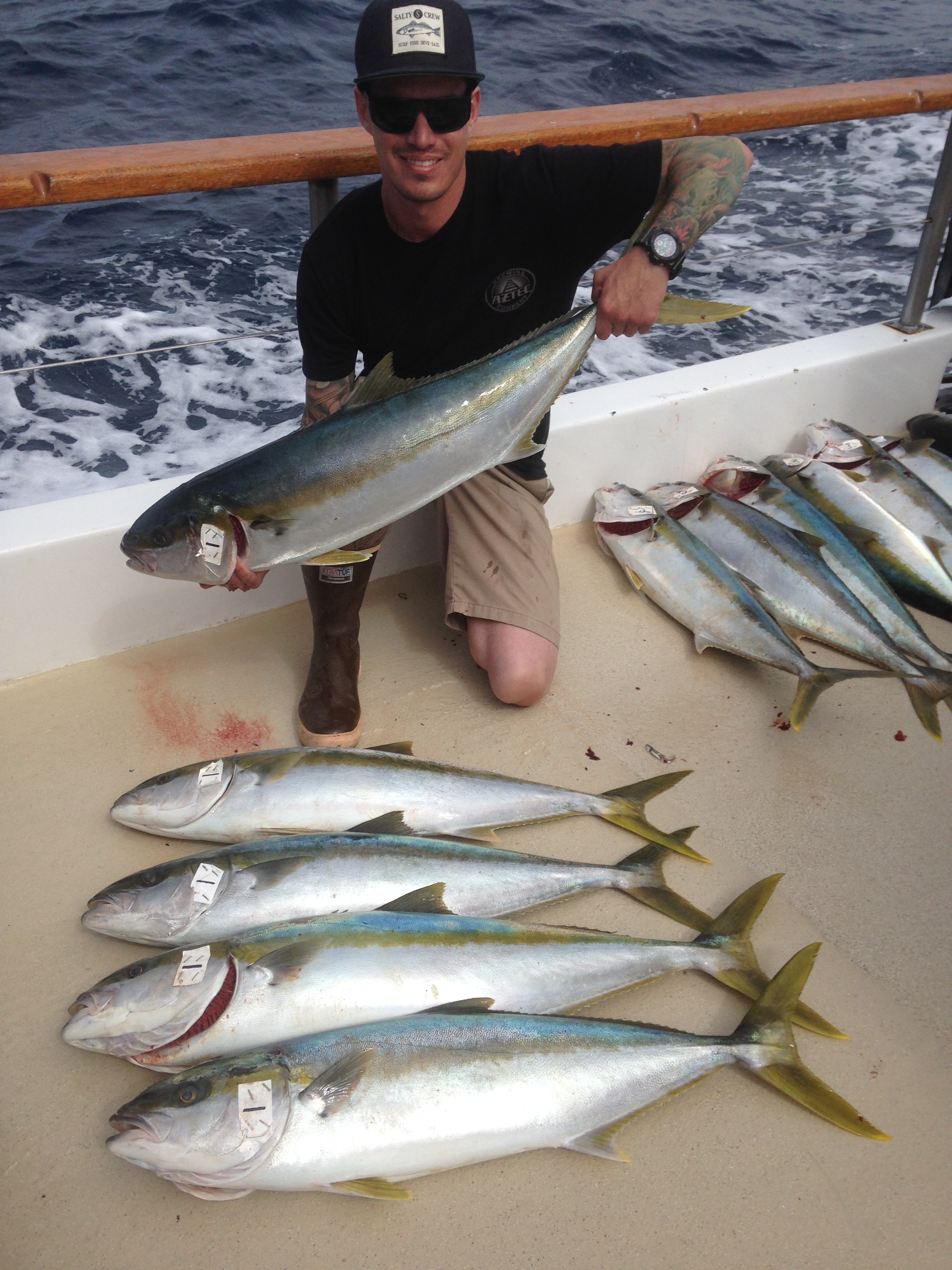 Sportfishing photo gallery san diego ca for Seaforth landing fish report